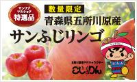 side_br_apple2016