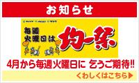 side_br_kinitsu