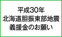 H30年北海道胆振東部地震